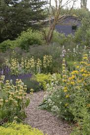 the best windy garden plants and