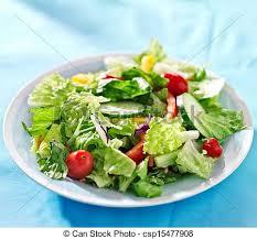 fresh garden salad. Beautiful Fresh Garden Salad With Fresh Vegetables On Blue Table Cloth  Csp15477908 Intended Fresh Garden Salad W