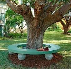 Tree benches 2