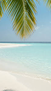 Beach scenery ...