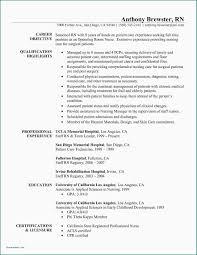 Sample Resume For Team Lead Position Sample Resume For Leadership Position Nurse Cover Letter Unique