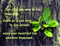 Beautiful Life Quotes Cool Beautiful Wallpapers With Quotes Of Life 48 Images On Genchi
