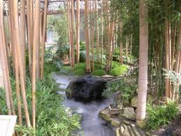 Small Picture bamboo garden design ideas zen garden design garden decor ideas