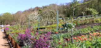 Kitchen Garden Blog The Kitchen Garden Blog April 2017