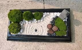 zen garden with moss