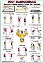 Yukon Fitness Shoulders Upper Arm Back Muscl
