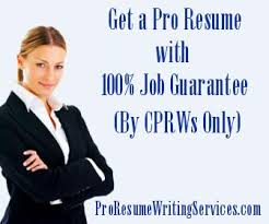 Professional Resume Writing Services domain name for sale on domain name for sale on VenteSites