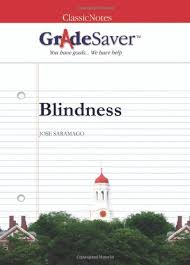 blindness themes gradesaver