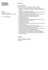 Project Coordinator Resume Sample Velvet Jobs