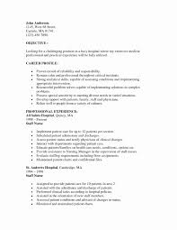 Nurse Recruiter Resume 100 Luxury Sample Recruiter Resume Simple Resume Format Simple 35