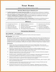 Real Estate Resume Examples Real Estate Resume Template
