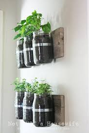 Mason Jar herb planters for the wall. I bet this would keep my herbs in the  kitchen away from a cat I know!