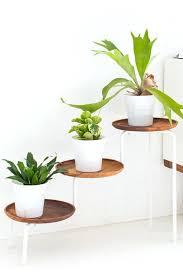 plant holder ideas wood plant stand diy plant holder ideas outdoor plant hanger ideas