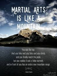 Martial Arts Quotes Amazing 48 Inspirational Martial Art Quotes You Must Read Right Now Bored Art