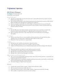 Marketing Manager Resume Junior Product Manager Resume Marketing