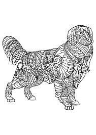 Coloriage De Chien Labrador A Imprimer L Duilawyerlosangeles