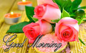 Wallpaper Good Morning Flowers Download