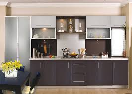 kitchen furniture cabinets. Modest Acrylic Cabinets Exterior A Home Office Design New In Ritz Custom Brown Finish Kitchen Cabinet Furniture E