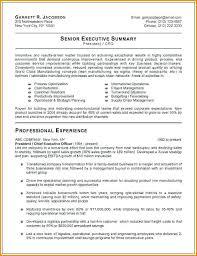 Management Resume Samples Delectable Senior Executive Resume Executive Resume Samples Best Executive
