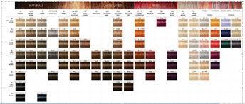 Schwarzkopf Hair Dye Color Chart Www Bedowntowndaytona Com