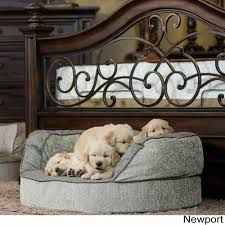 designer dog bed furniture. Shop Integrity Bedding Luxury Orthopedic Memory Foam Designer Dog Pet Bed By K Guccione - Free Shipping Today Overstock.com 10292678 Furniture