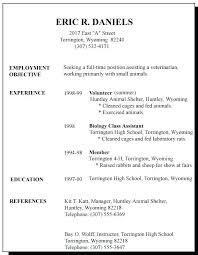 My First Job Resume Stunning My First Job Resume Exquisite Design Resume For Teenager First Job