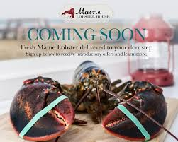 maine lobster house ing soon
