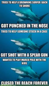 shark meme funny pictures
