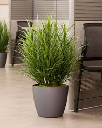 artificial plants for office decor. silk grass plant artificial plants for office decor p