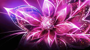 cool flower wallpapers