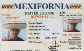 Driver Fake License Picture Funny