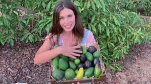 Yo investigo Yo soy CSIC - Alicia Talavera Júdez - YouTube