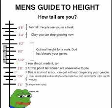 Men Height Chart Meme Best Memes About Height Chart
