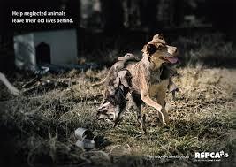 animal cruelty ads. Simple Cruelty Stop The Abuse  Animal AntiCruelty League On Animal Cruelty Ads