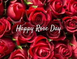Happy Rose Day 40 Wishes Love Quotes SMS'es Whatsapp Status Unique Beautiful Madam In Beautiful Garden Quotes