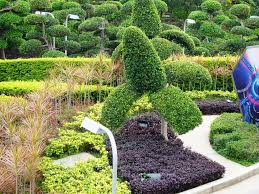 Simple And Easy DIY Backyard Landscaping House Design With Small Simple Backyard Garden Ideas