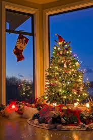 Beautiful Christmas Tree In The Window Of A House Stock Photo Christmas Tree In Window