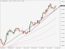 Eur Usd Risk Reversal Points To Bull Trap