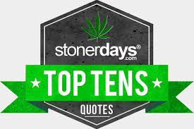 Top 40 Stoner Quotes Beauteous Stoner Friendship Quotes