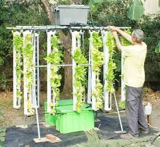 hydroponic vertical garden. Major Advantages Of Vertical Hydroponic Grow Systems Over Tradition Include: Garden
