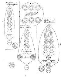 Remarkable occult wiring diagrams photos best image engine