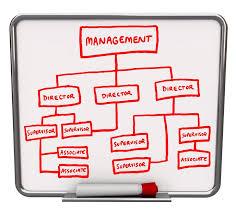 Organizational Chart Leadership Titles The People Equation