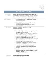 Free Sample Resumes Online online resume samples resume template online berathencom resume 71