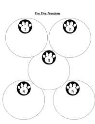 image?width=500&height=500&version=1357556187000 rspca resources by claireperriam teaching resources tes on instructions worksheet ks1