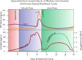 Chart Of Menstrual Cycle Hormones Common Signs Of Progesterone Deficiency Progesterone