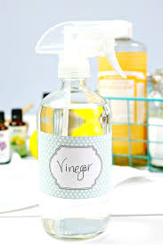 vinegar cleaning solution vinegar cleaning solution vinegar solution for cleaning glass shower doors