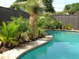 Small Picture Decoration Knockout Swimming Pool Garden Design Ideas Landscape