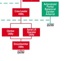 International Society Of Arboriculture Careers Careers