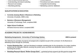 Admin Executive Sample Resume Commercial Finance Manager Sample