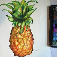 pineapple drawing color. pineapple drawing color i